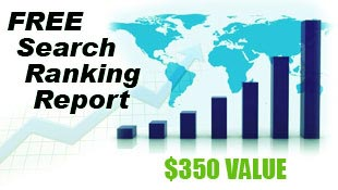SEO Search Ranking Report